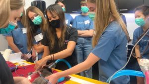 Future Vet Kids Campers watch a surgery