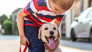 Setting up your pet for success